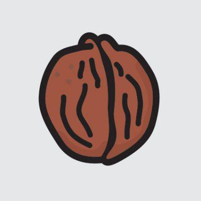 Pobiranje orehov